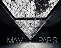 Musée d'Art Moderne Concept
