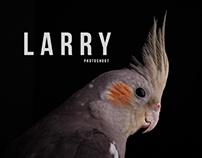 Larry Photoshoot
