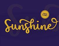 Sunshine // free brush script font