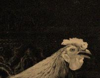 Chicken Ritual