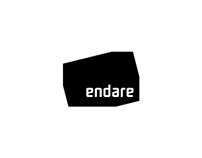 Logo & Brand identity design for endare