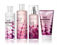 Essence of Beauty Packaging: Secret Woods