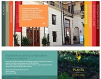 Museo Provincial Angel Gallardo. Web design.