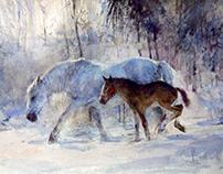 Лошадки зимой.Июлька и Морозка