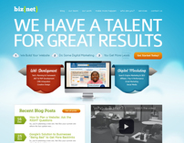 Biznet Website Redesign Process
