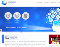 Technology Consulting Company