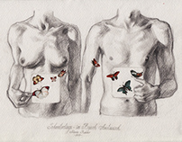 Butterflies in the stomach exchange