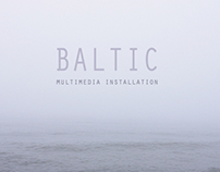 BALTIC - multimedia installation