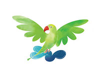 Parakeet Illustration