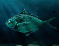 Thinking fish