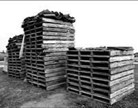 Pallets, Photograph