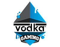 VodkaGaming Club