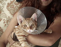 Trabulo&Cat