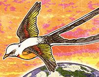 Global Okie - Flycatcher Poster