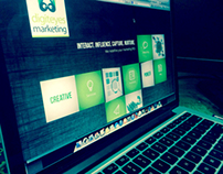 Marketing Website
