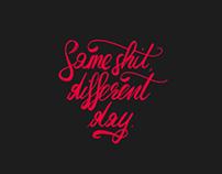 2013 Logo & Calligraphy
