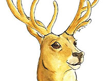 Watercolor Animals for several projects