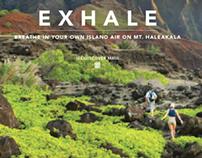 Hyatt Maui Campaign