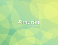 Emeron Shampoo Web-Interface Design Proposal