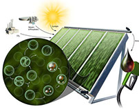 Green Technology: Renewable Energy and Conservation