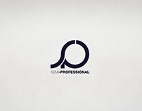 LOGO: SEMI-PROFESSIONAL