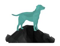 Puppy Hill Farm Animal Rescue Branding Campaign