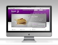 Banif Grupo Financeiro - Website
