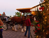 Christmas on the Farm - Arcadia