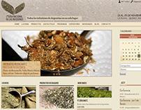 Feria Nacional de las Infusiones - Diseño Web