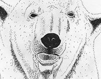 Ilustração e lettering para banda Holger. Noize #24