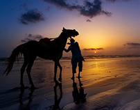 Sunset and Rider