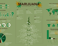 Marijuana infography