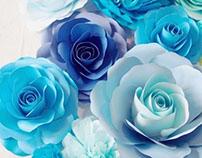 blue • beige