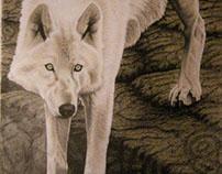 wolf, petroglyphs