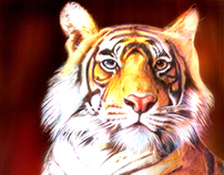 Illustrations - Rajasthan