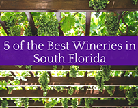 5 of the Best Wineries in South Florida