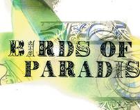 Birds of Paradise (Pre-Collection)