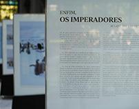 Exposição: ENFIM, OS IMPERADORES de Marina Klink