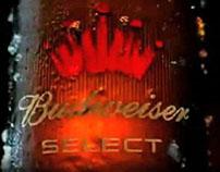 Bud Select Selective Memory
