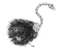 Ballet Ostrich