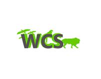 WSC Website Design