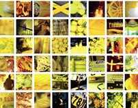 yellow reflections
