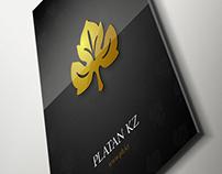 Platan KZ