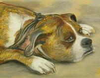 Dog Pout