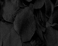 Le noir donne l'elegance