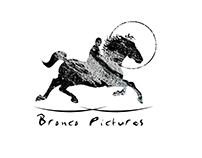 Logo for Bronco Pictures