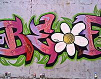 Graffiti Genel