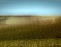 Fields&Dreams