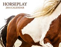 2014 Horseplay Calendar