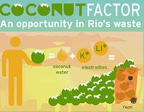 Brazil's Coconut Factor
